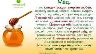Скачать Про Мед Питание в благости Торсунов О Г 11 04 2012 Питер