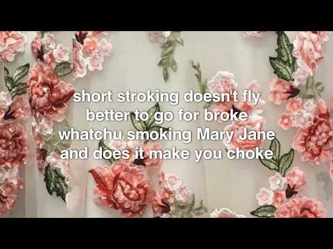 Red Hot Chili Peppers - Happiness Loves Company (lyrics)