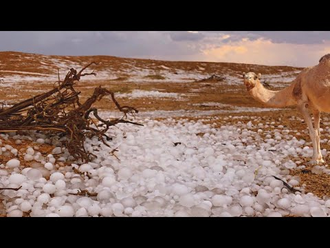 Massive hailstorm in Saudi Arabia desert: hail, rain, flood and ice storm. Natural Disasters