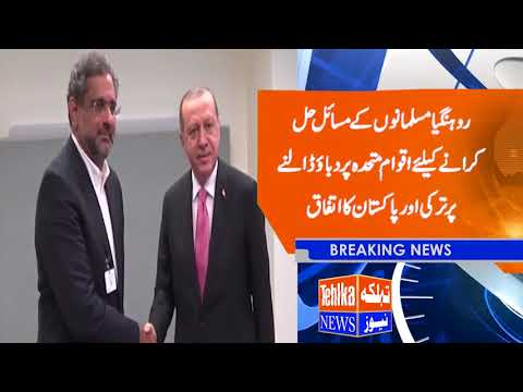 Prime Minister Shahid Khaqan Abbasi meets Turkish President Recep Tayyip Erdoğan