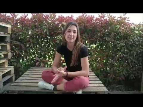 Dove acquistare l'Aloe: FruttaWeb from YouTube · Duration:  1 minutes 28 seconds
