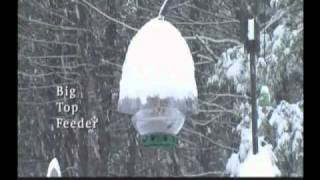 Droll Yankees Line Of Bird Feeders