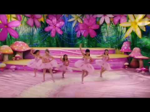 The Fairies  Rainbow Fairies
