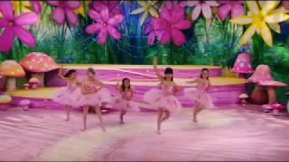 The Fairies | Rainbow Fairies.