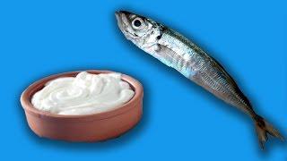 Balıkla Yoğurt Yerseniz Zehirlenir Misiniz? - Test Ettik