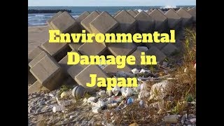Environmental Damage in Japan - Concrete Pouring Business - Dogs and Demons Alex Kerr