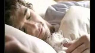 Kuklachev Cats Work / Whiskas Comercial (2)