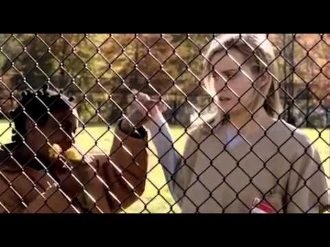 Orange is the new black - Bande annonce