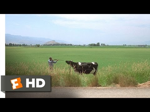 Napoleon Dynamite (3/5) Movie CLIP - The Bus Shows Up at Exactly the Wrong Time (2004) HD