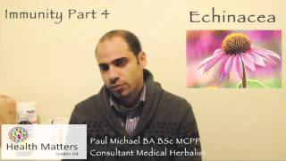 Health Matters London - Immunity part 4: Echinacea