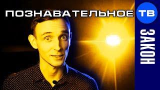 Евгений Пупырин. Бизнес на лохах. Шокирующая правда (Артём Войтенков)