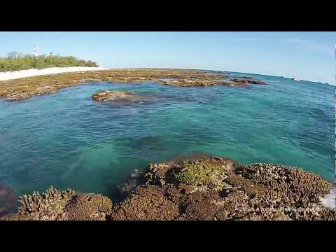 Aerial photography of Lady Elliot Island Great Barrier Reef Australia