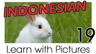 Learn Indonesian Vocabulary with Pictures - Farm Animals