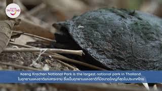 Thailand Trusted Report EP 26: Kaeng Krachan Forest Complex
