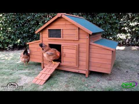 NSG Hill, LLC - Pets Imperial® Savoy Double Chicken Coop