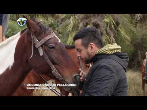 Corrientes Esteros del Ibera Colonia Carlos Pellegrini Folclore y Baile Tradicional