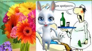 ZOOBE зайка  Весёлое Поздравление с Днём Медика !