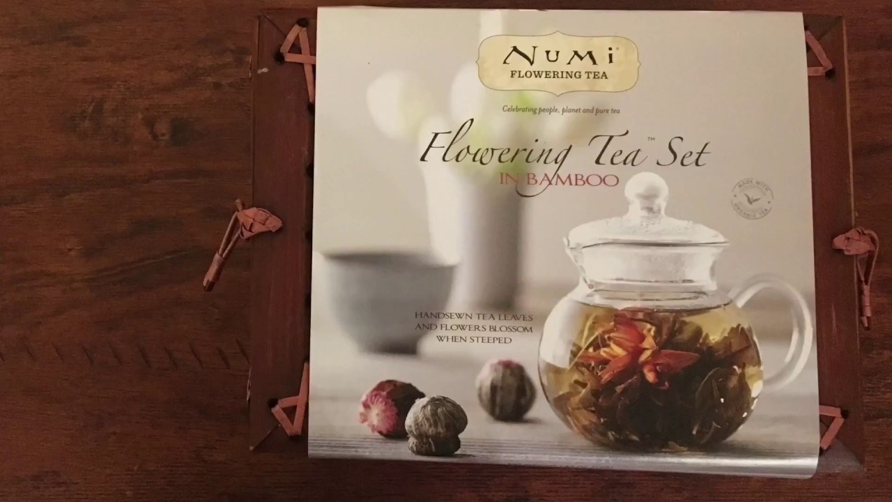 TKTP Numi Flowering Tea Set REVIEW AND UNBOXING & TKTP: Numi Flowering Tea Set REVIEW AND UNBOXING - YouTube