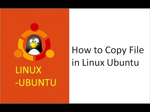 copying files from one directory to another in linux, copy file, folder,  directories