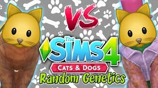 The Sims 4: Random Genetics CAT Challenge VS Yammy