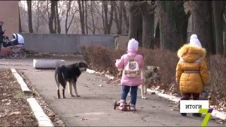 В Одесской области нехватка вакцин от бешенства(Шокирующая новость из области. В Кодыме бешеная собака покусала семейную пару. Животное было домашним люби..., 2016-02-20T18:27:29.000Z)