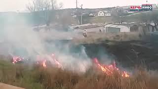 Пожар в Керчи: загорелся камыш