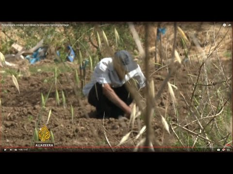 Palestinians create seed library to preserve farming heritage