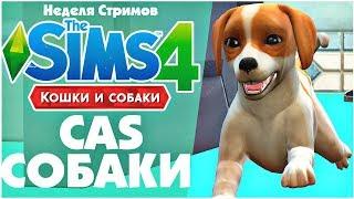 The Sims 4: Кошки и Собаки - Создаем собак | Cas