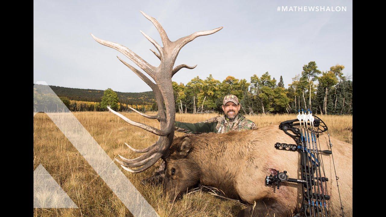 Quick Cuts - Lee Lakosky, Colorado Elk - YouTube