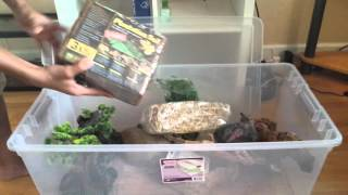 HUGE Reptile Supplies Haul
