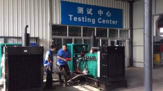 300kw biogas generator for a large scale cow farm in China