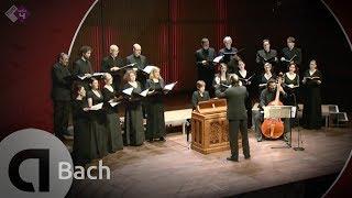 J.S. Bach: Motet BWV 229