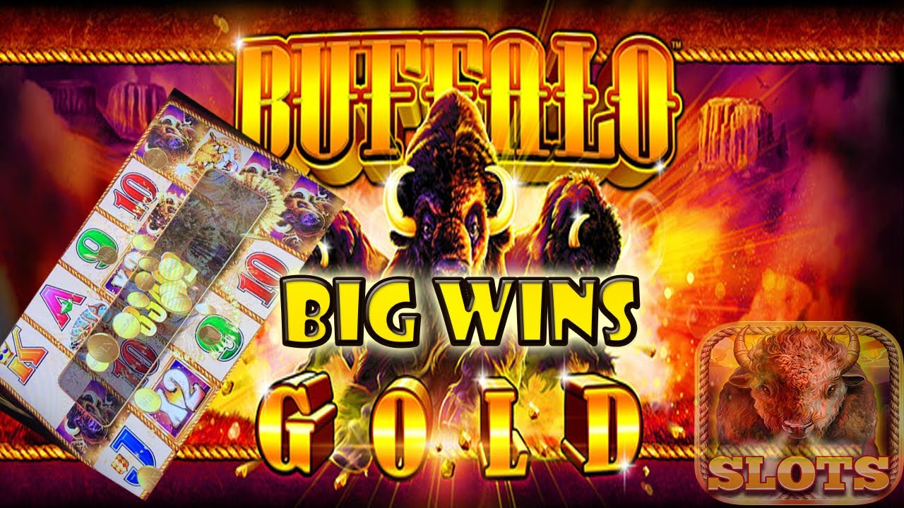 Buffalo Slots Big Wins