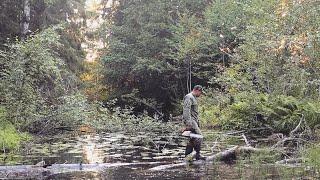 РАСЧИСТИЛИ РЕКУ наловили рыбы СПУСТЯ 20 ЛЕТ МЫ ПРОШЛИ ЗДЕСЬ НА ЛОДКЕ Щука на лягушку в зарослях