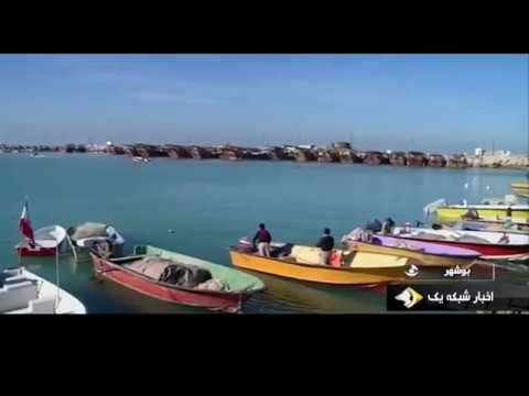 Iran Shrimp fishing season in Persian Gulf, Bushehr port فصل صيد ميگو بندر بوشهر ايران