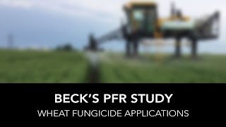 Beck's PFR Report | Wheat Fungicide Applications