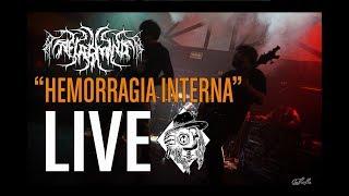 "NECROMIND - ""Hemorragia Interna"" - Tourcam Live"