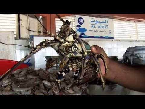 The fish cleaners of Sharjah