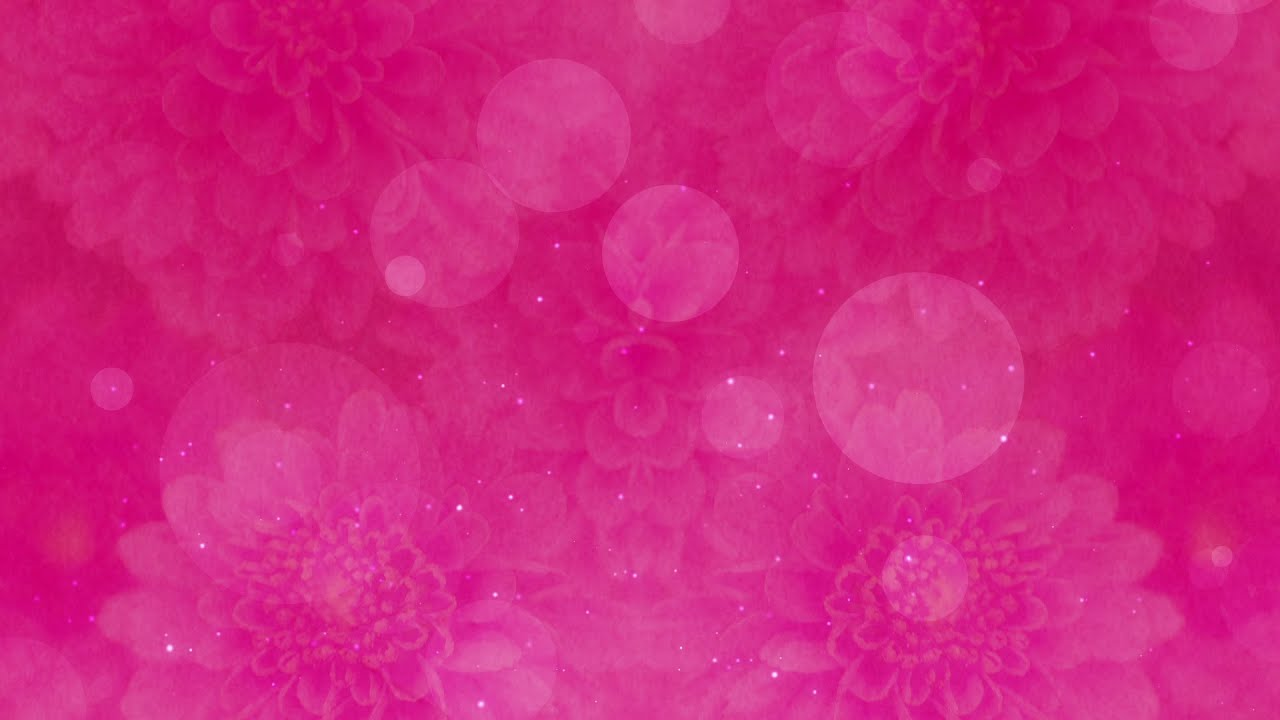 Pink Floral Bokeh Hd Video Background Loop Youtube