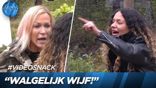 Shelley maakt Alexandra kapot! 🤬 | UTOPIA