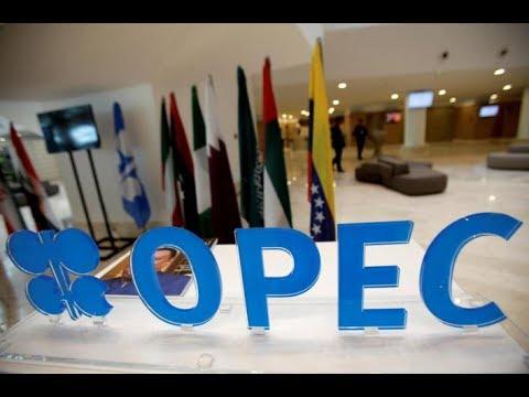 Oil Market Live Conference