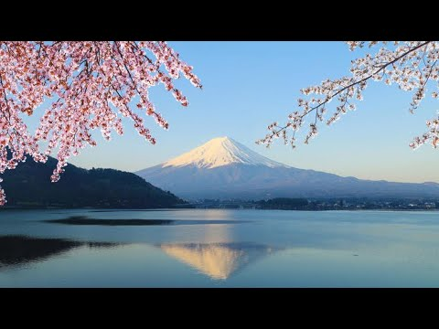 Tokyo - Mt Fuji Day Trip including Lake Ashi Sightseeing Cruise