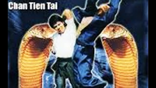 Cobra Karaté - Film COMPLET en français