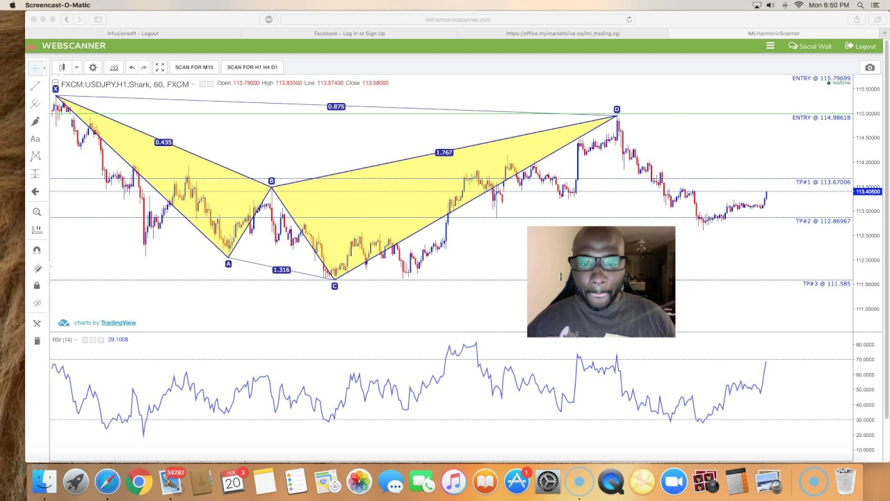 Forex scanner review