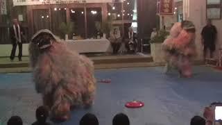 獅子舞 仲西公民館 十五夜祭 2017.10.4①