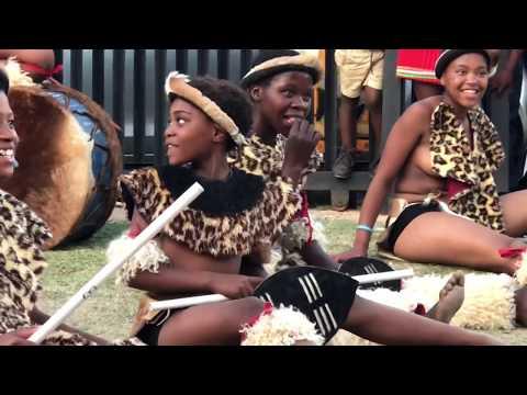 Traditional Zulu dance with Panda 🐼