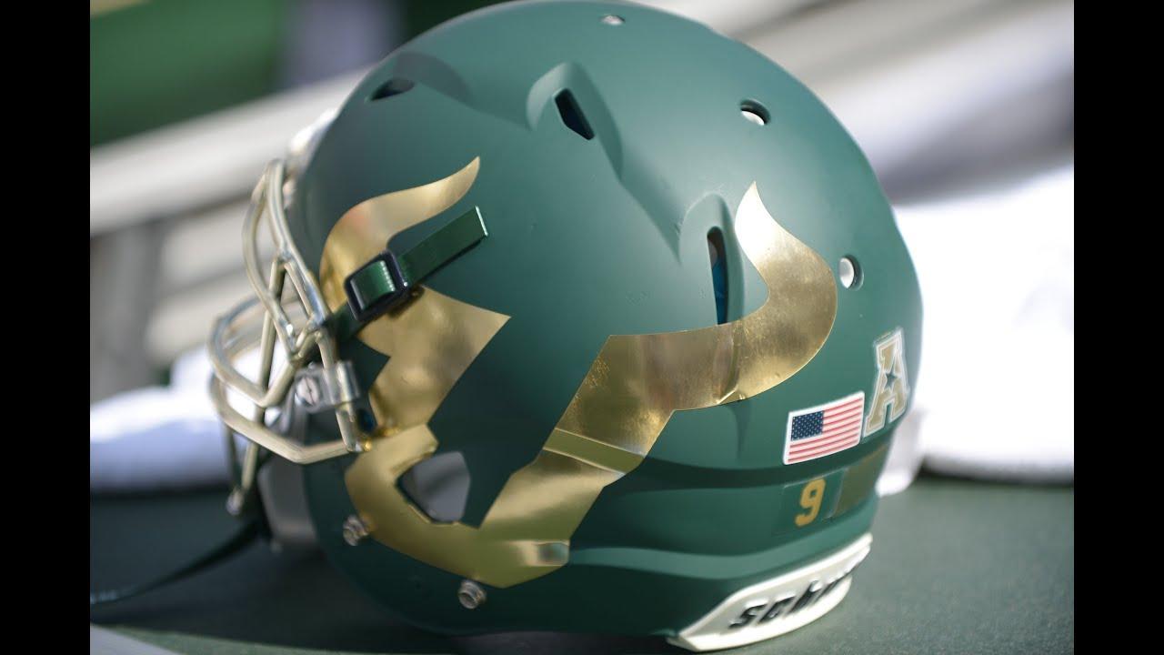 Image result for usf football helmet