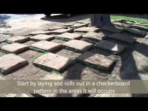 How To Install Sod In 10 Steps