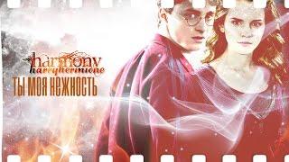 Harry+Hermione | Ты моя нежность