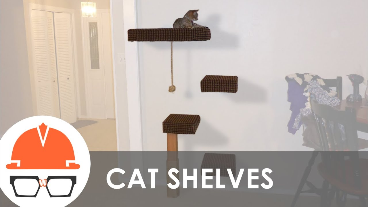 How To Build A Wall Mounted Cat Tree Youtube